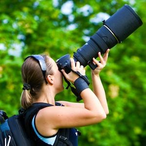 fully-fledged photographer